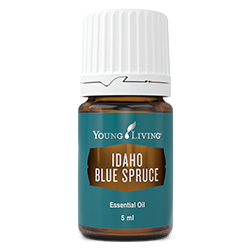 YL Idaho Blue Spruce Essential Oil