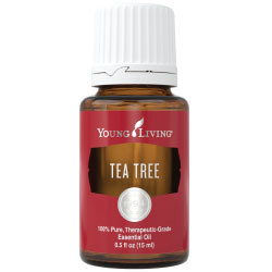YL Tea Tree Essential Oil