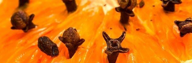 I Hate Clove Essential Oils - orange clove