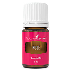 YL Rose Essential Oil