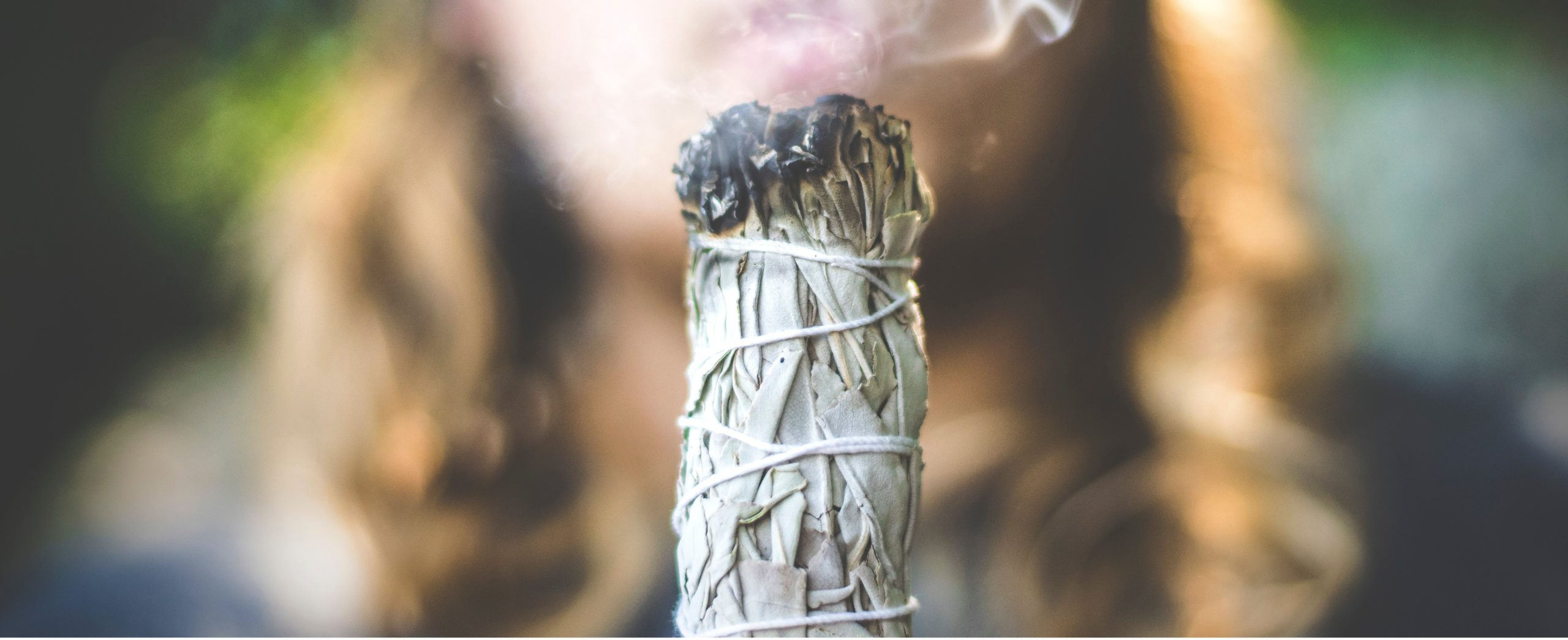 White Sage Smudge Sticks - header 1